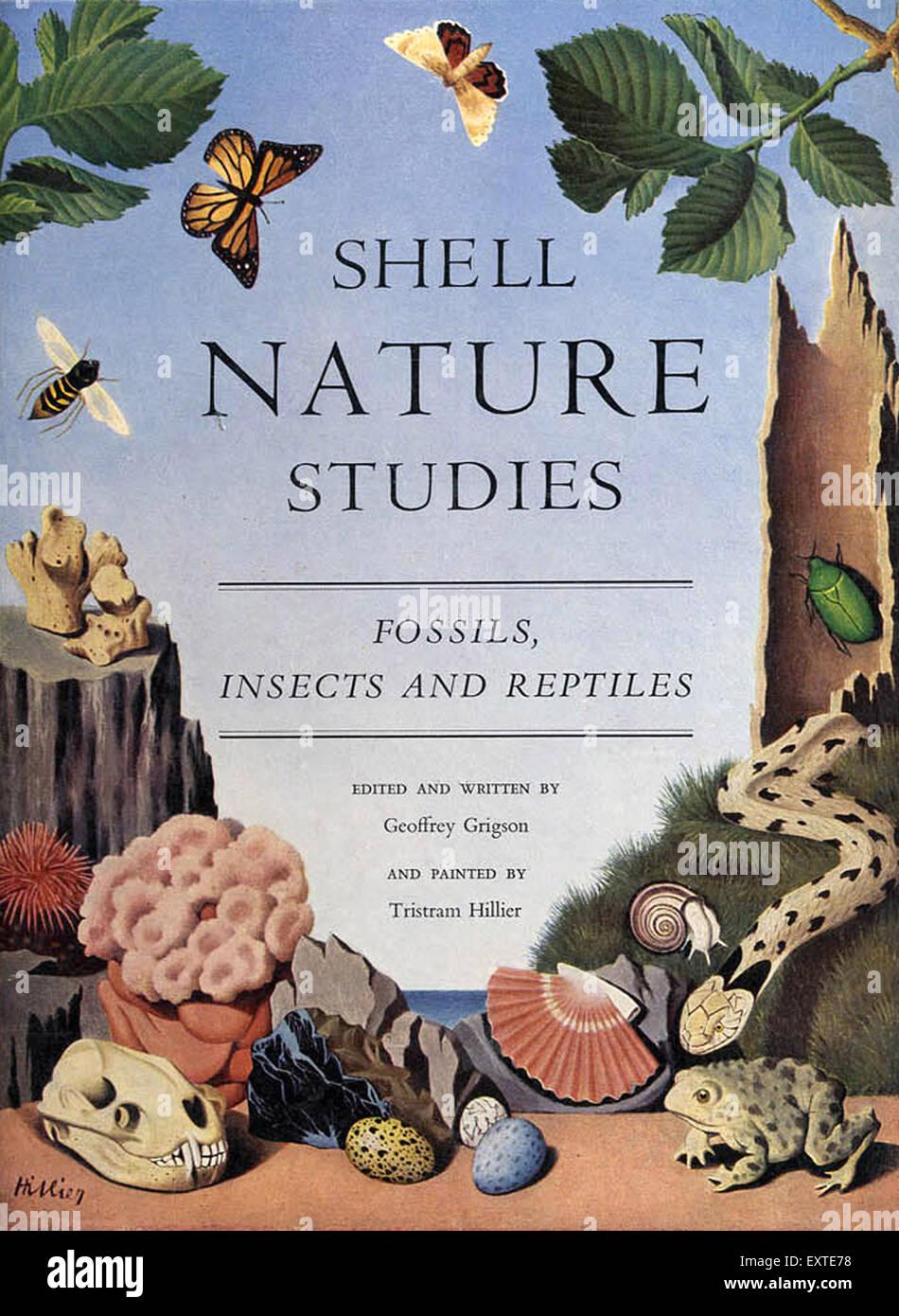 1950 UK Nature Shell Studies fossiles, insectes et reptiles Couverture de livre Photo Stock