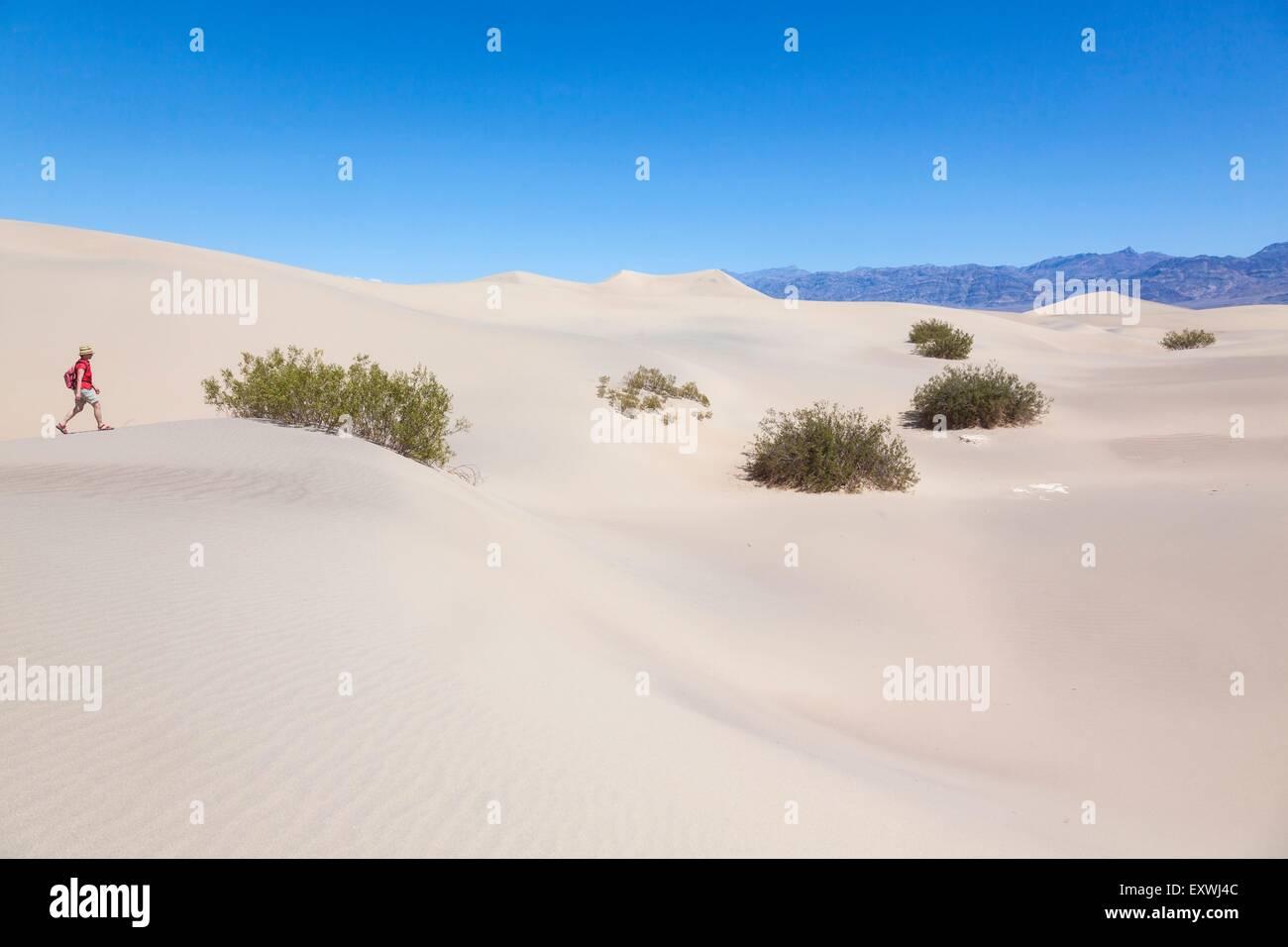 Femme de la randonnée dans les dunes Mesquite, Death Valley, California, USA Banque D'Images