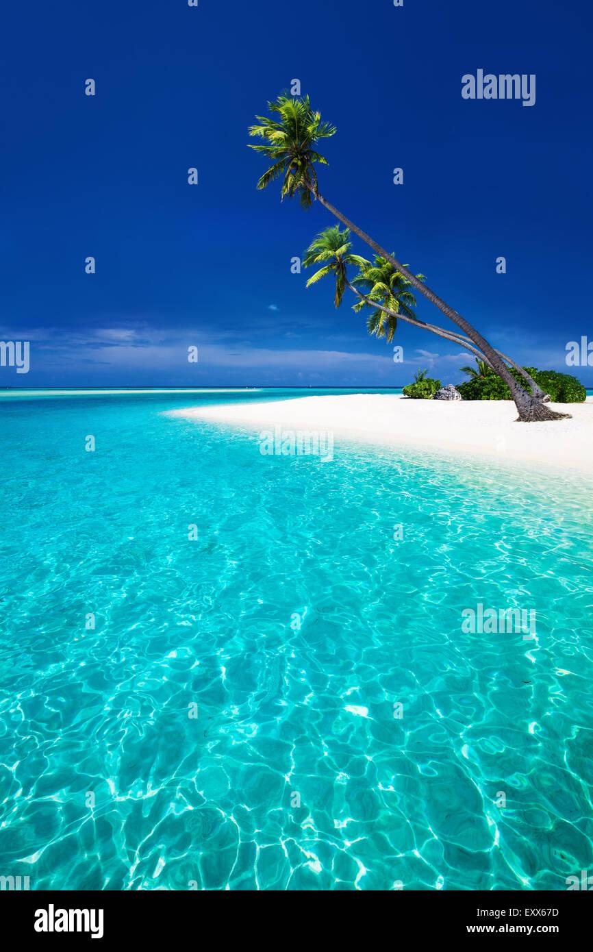 Amazing beach sur une île tropicale avec palmiers surplombant lagoon Photo Stock