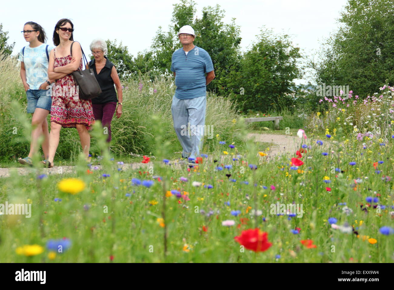 Les visiteurs de Sheffield Manor Lodge à pied le long d'un chemin bordé de fleurs sauvages, Yorkshire, Photo Stock