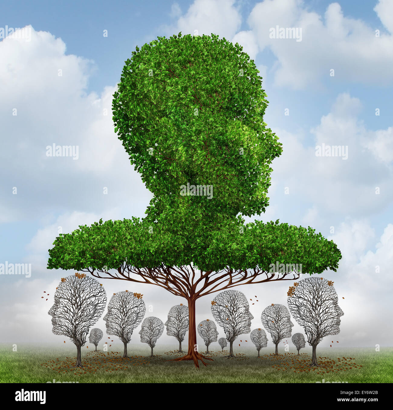 L'inégalité sociale concept comme un arbre géant en forme de tête humaine bloquant la lumière Photo Stock