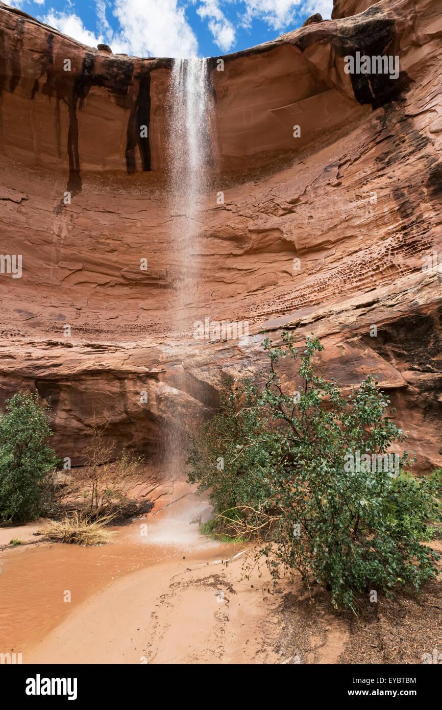 Le ruissellement des eaux de pluie dans la région de canyon après tempête, Moab, Utah Photo Stock