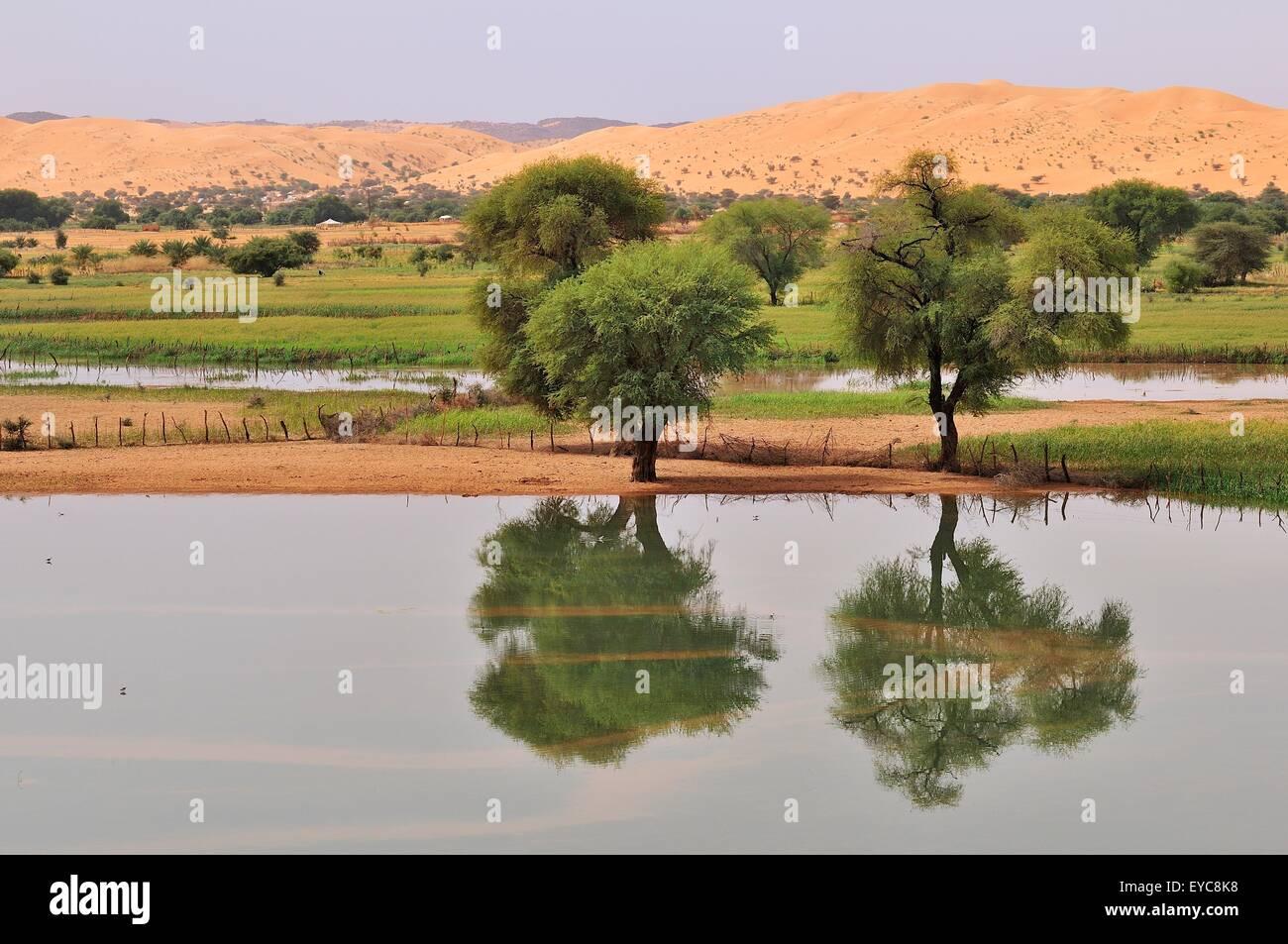 lac temporaire apr s la pluie dans l 39 oasis moudj ria. Black Bedroom Furniture Sets. Home Design Ideas