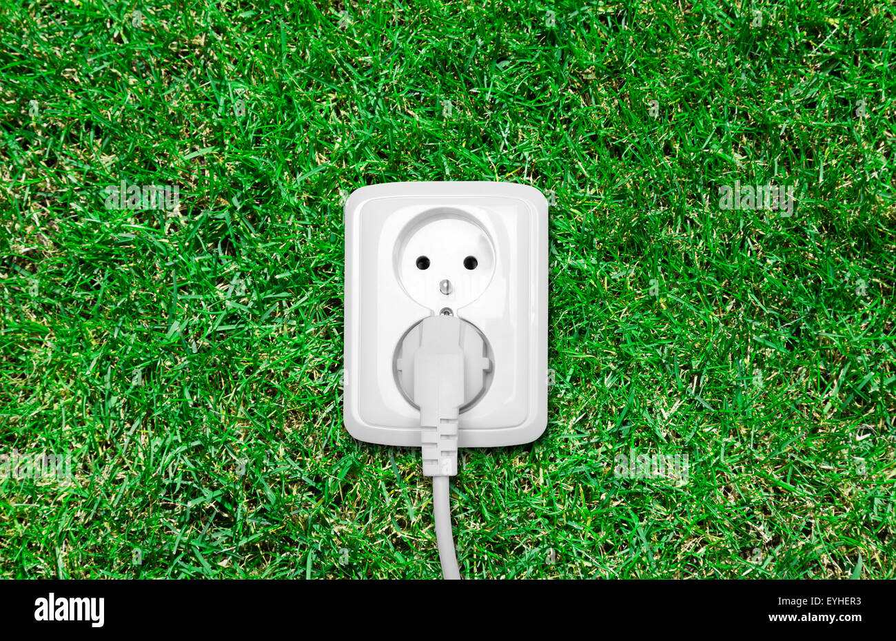 Prise électrique sur l'herbe verte Banque D'Images