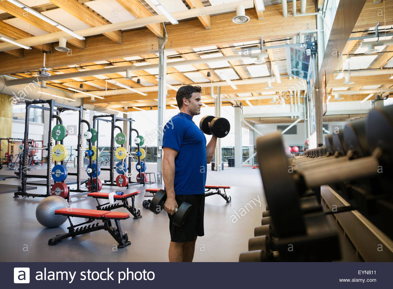 Man doing biceps haltère at gym Photo Stock