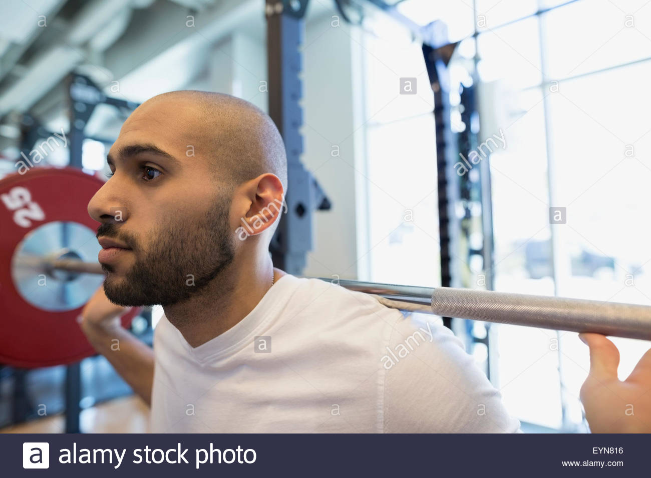 Close up man doing squats barbell at gym Photo Stock