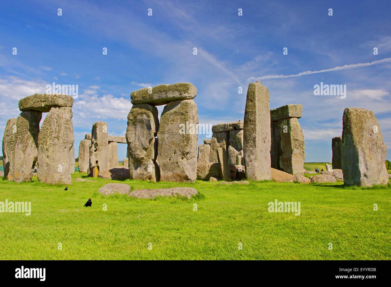 Stonehenge, Wiltshire, Royaume-Uni, Angleterre, Stonehenge Photo Stock