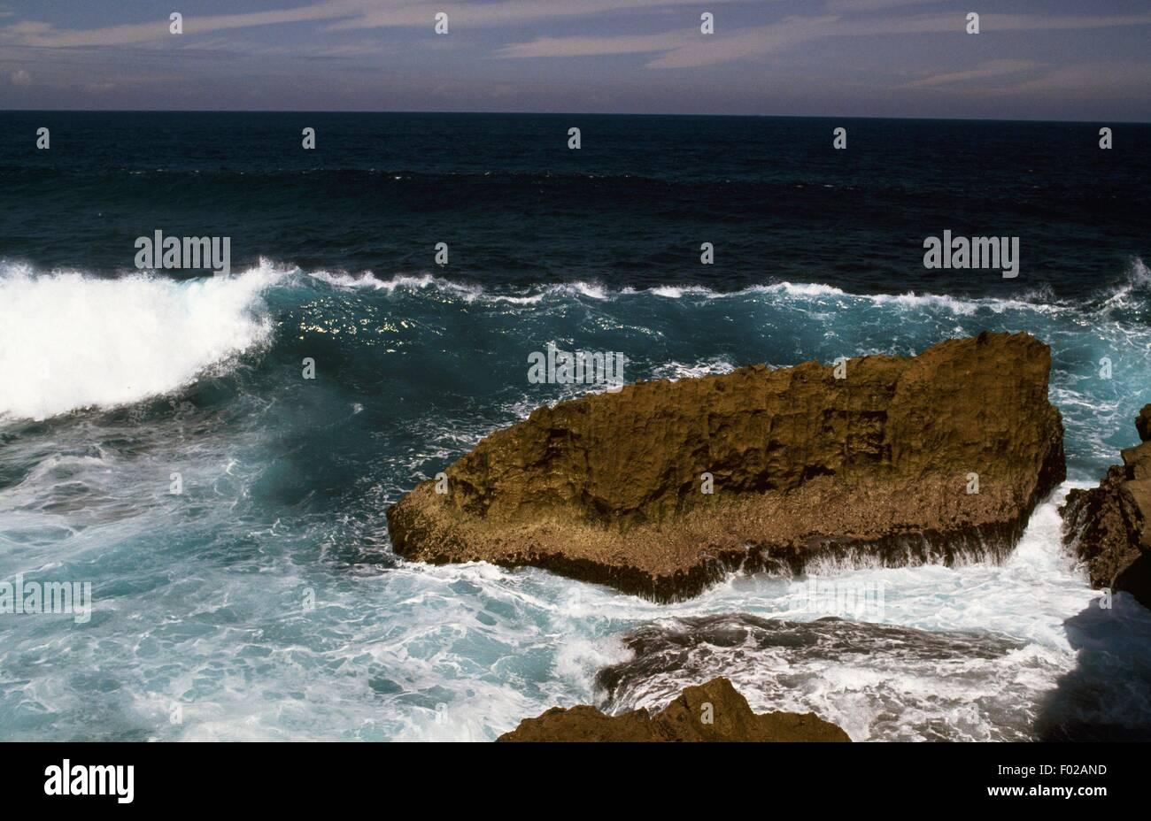 Vagues se brisant sur la côte rocheuse, Puerto Rico. Photo Stock