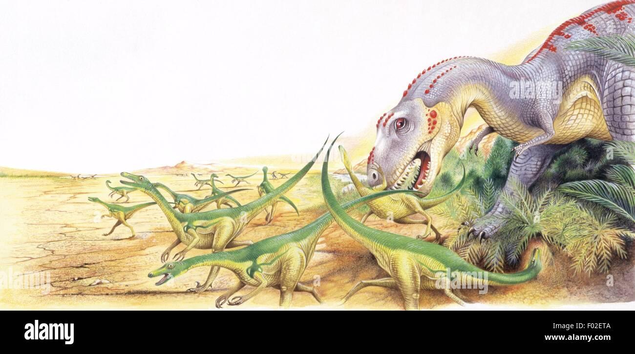 Paléozoologie - Crétacé - Dinosaures - Tarbosaurus - travail d'Art Banque D'Images