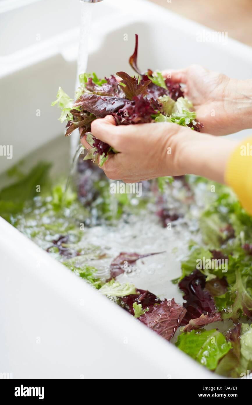 Femme lave-légumes dans un évier de cuisine Photo Stock