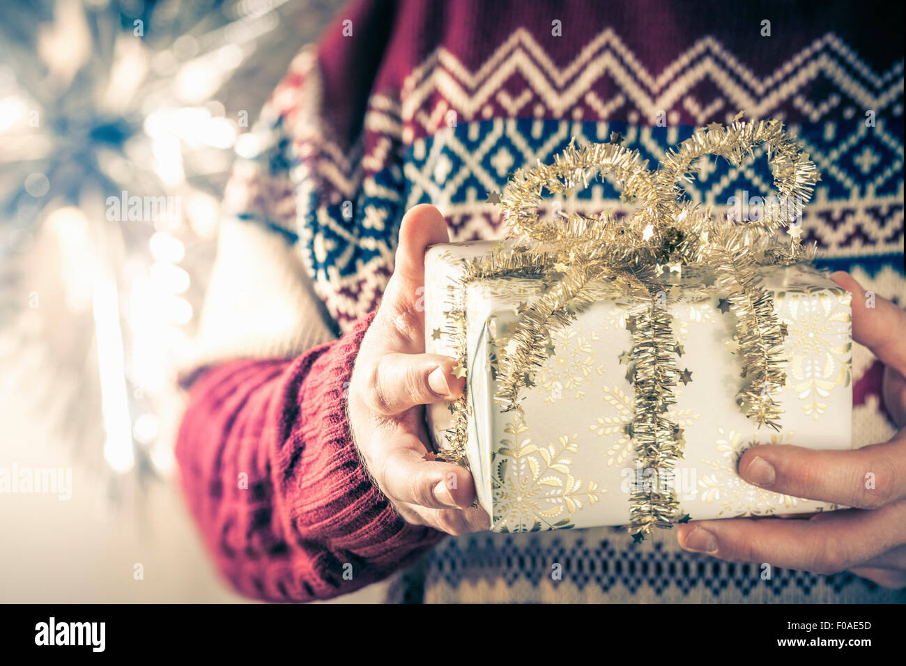 Personne holding christmas gift Photo Stock