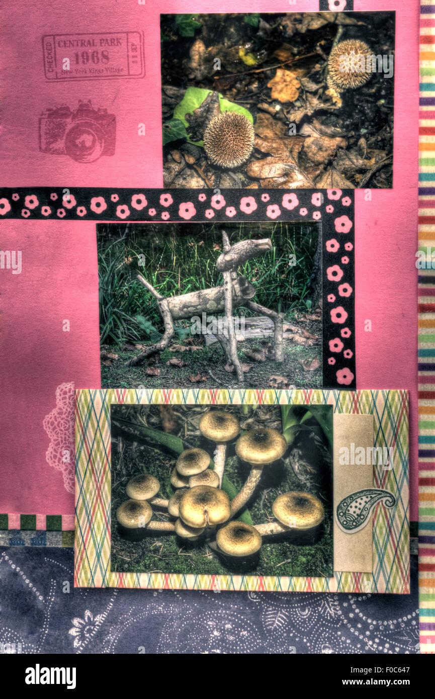 Une vue verticale d'un coloré décoré page d'album, les plantes Photo Stock