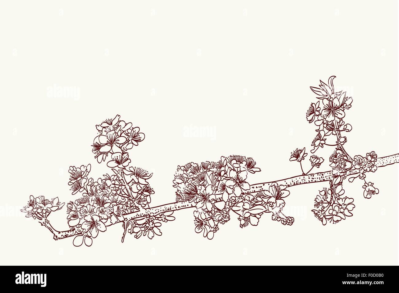 Dessin De Fleurs Stylisées Sakura En Deux Couleurs Vecteurs