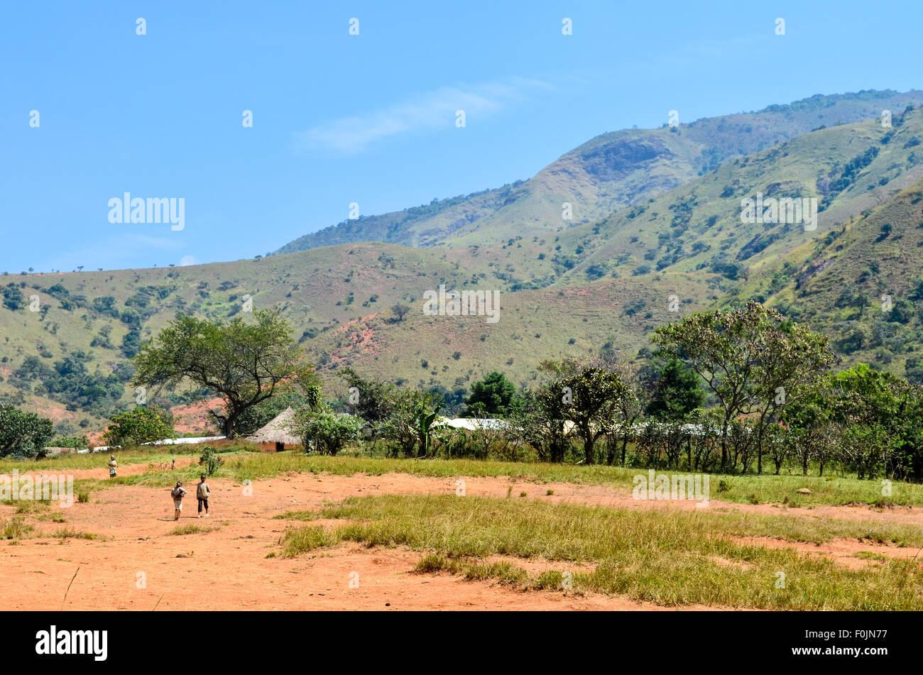 Enfants dans un champ au Cameroun Photo Stock
