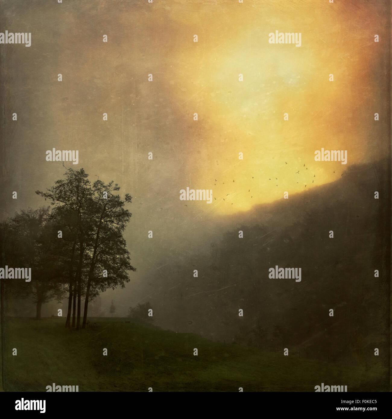 Paysage au lever du soleil dans le brouillard, effet de texture Photo Stock