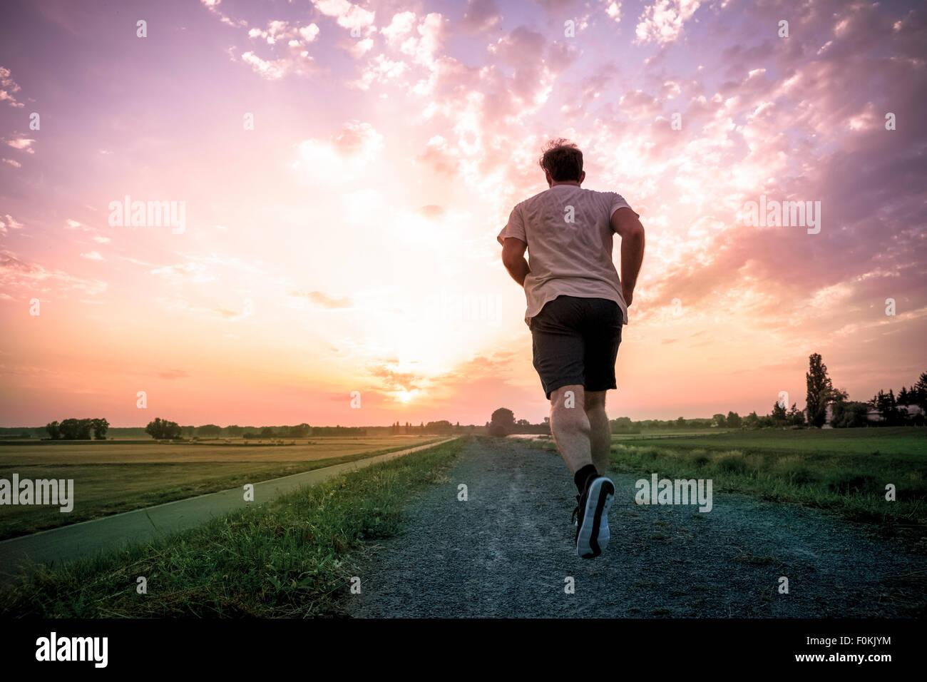 Vue arrière du man jogging at sunset Photo Stock
