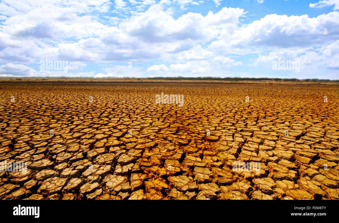 Désert aride des terres dans le parc national de Sarigua au Panama Banque D'Images