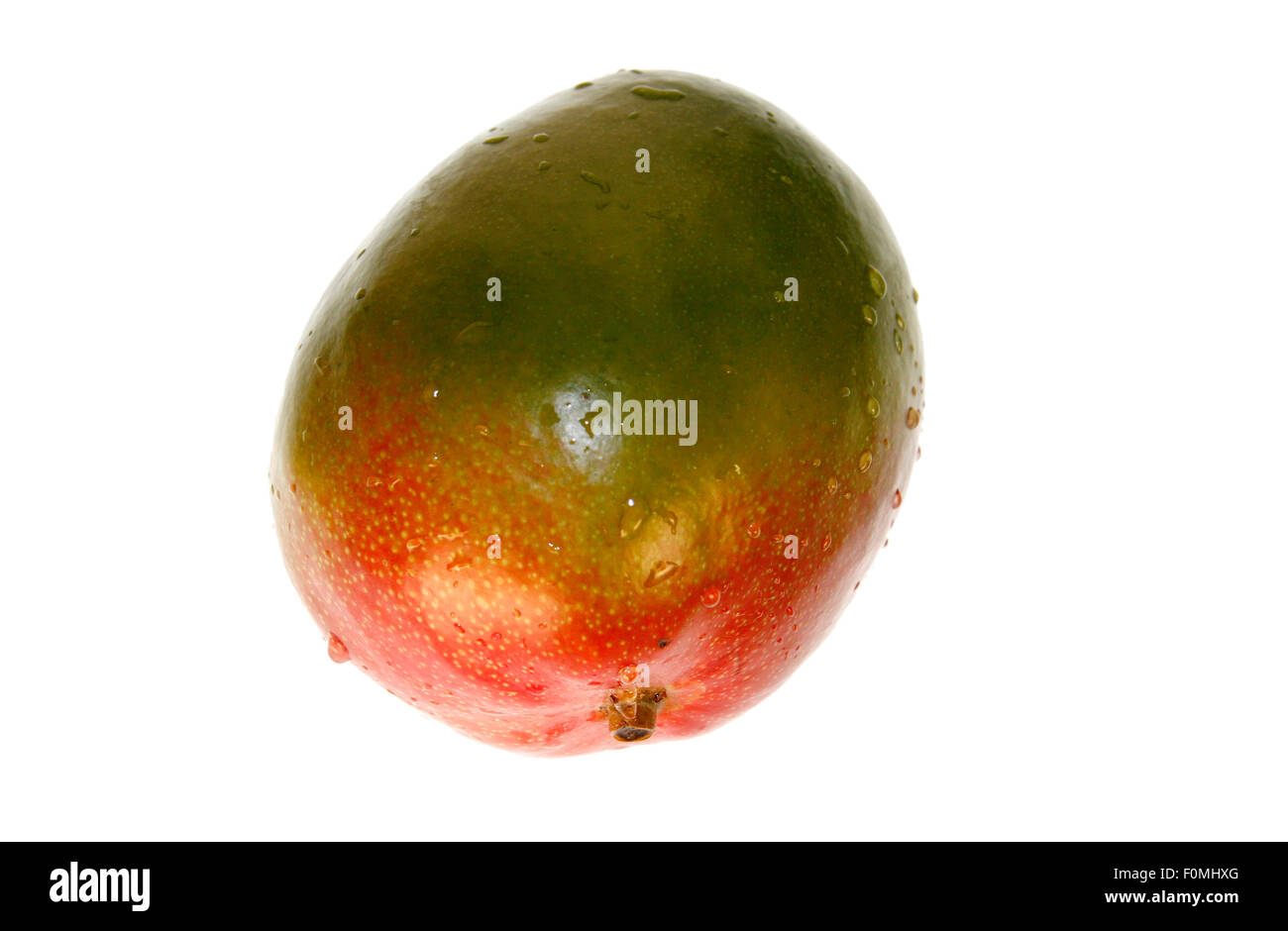 Mango - Symbolbild Nahrungsmittel.- Photo Stock