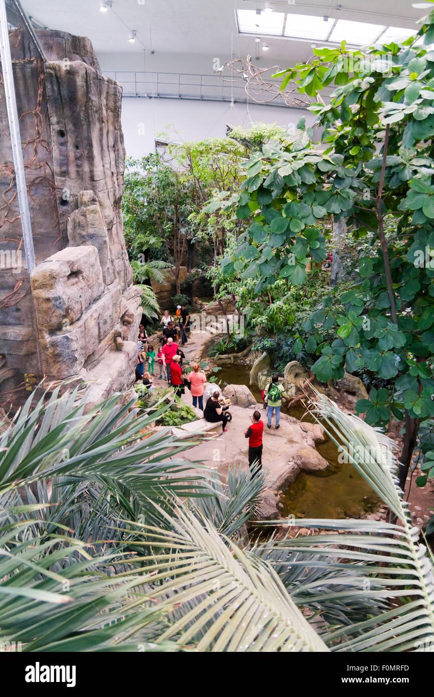 Chambre exotique au zoo de Karlsruhe, Allemagne Banque D ...