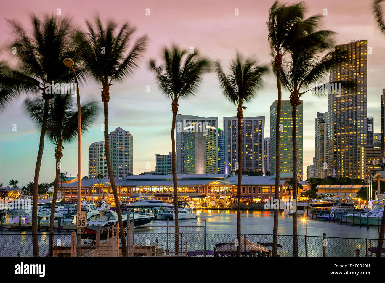 Miami, Bayside Mall at Dusk Photo Stock