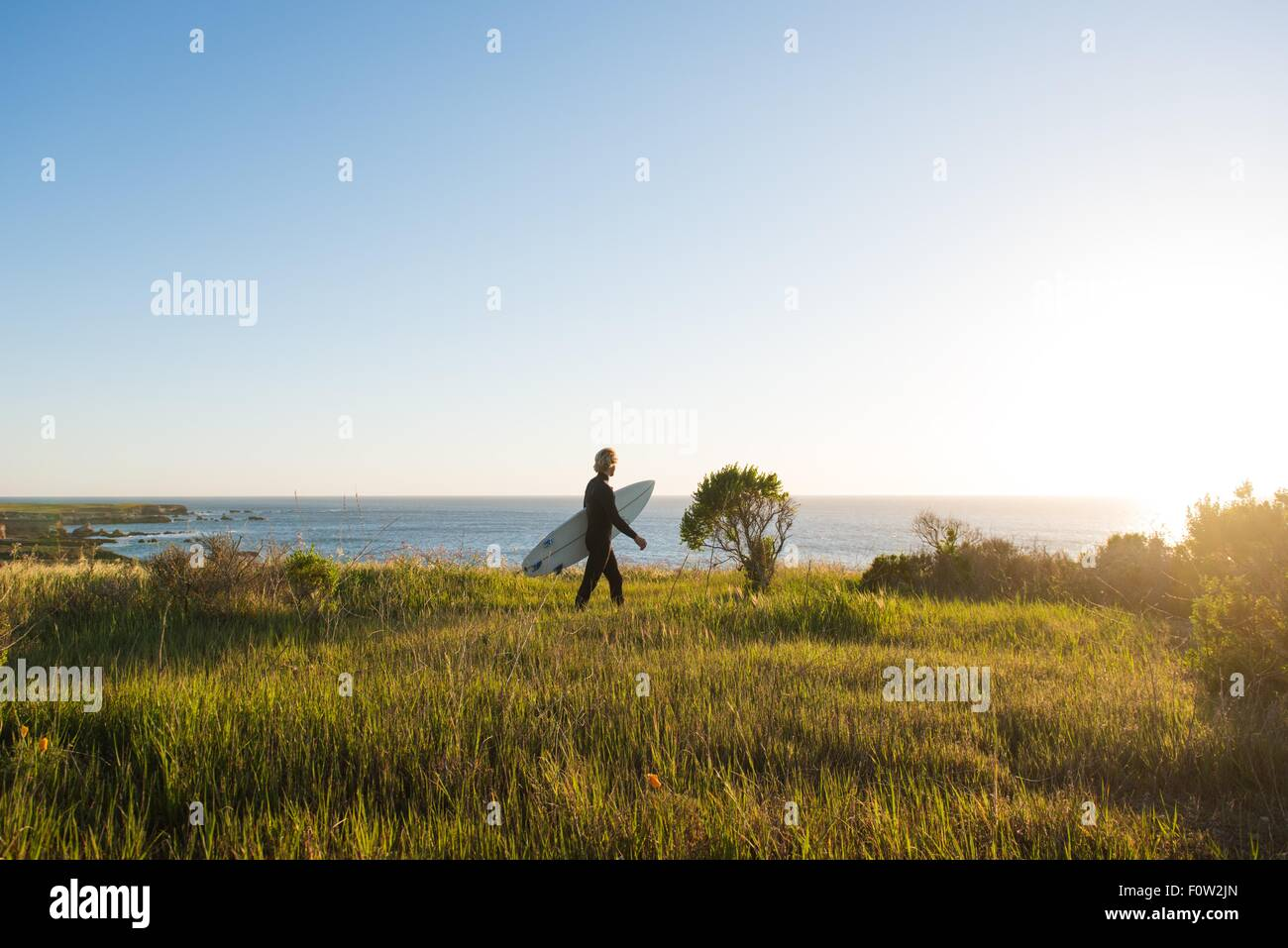 Young male surfer walking with surfboard at sunrise Photo Stock