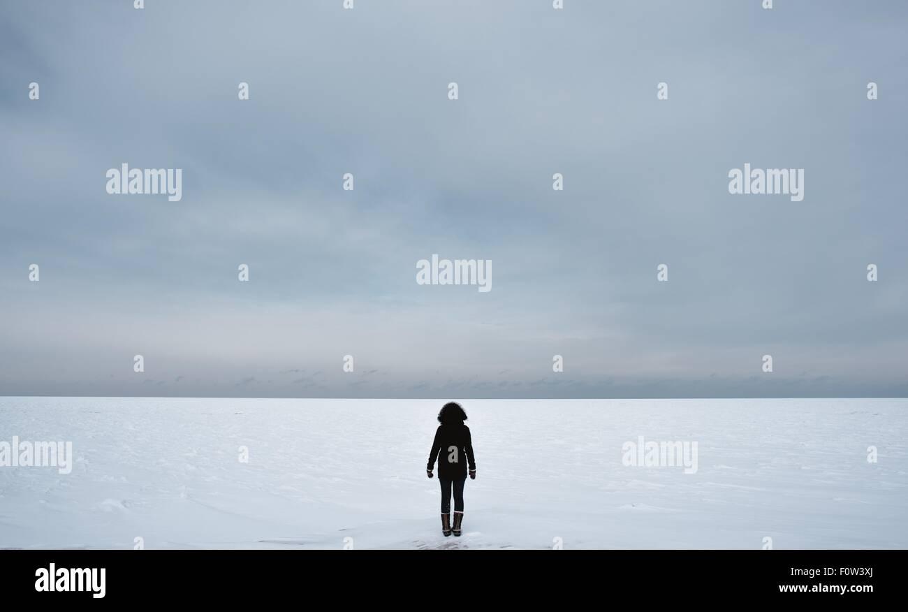 Vue arrière de femme sur paysage d'hiver Photo Stock