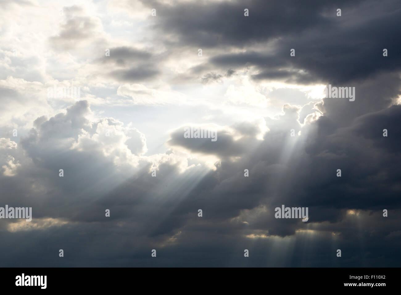 La lumière du soleil qui brillait à travers les arbres de nuage noir Photo Stock