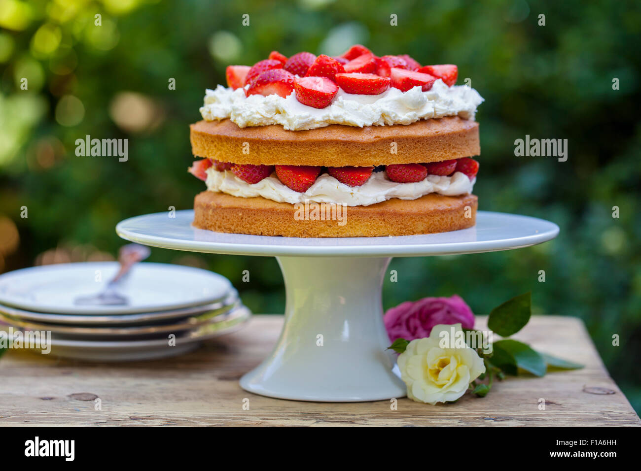Summer berry cake Banque D'Images