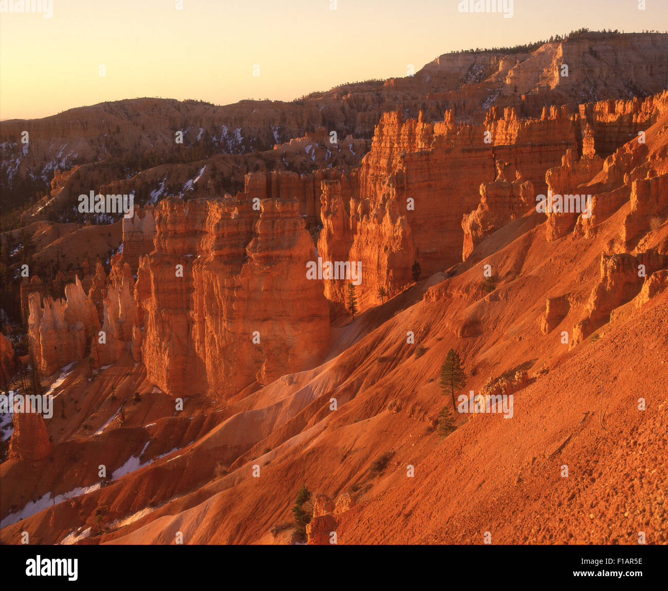Le Parc National de Bryce Canyon Photo Stock