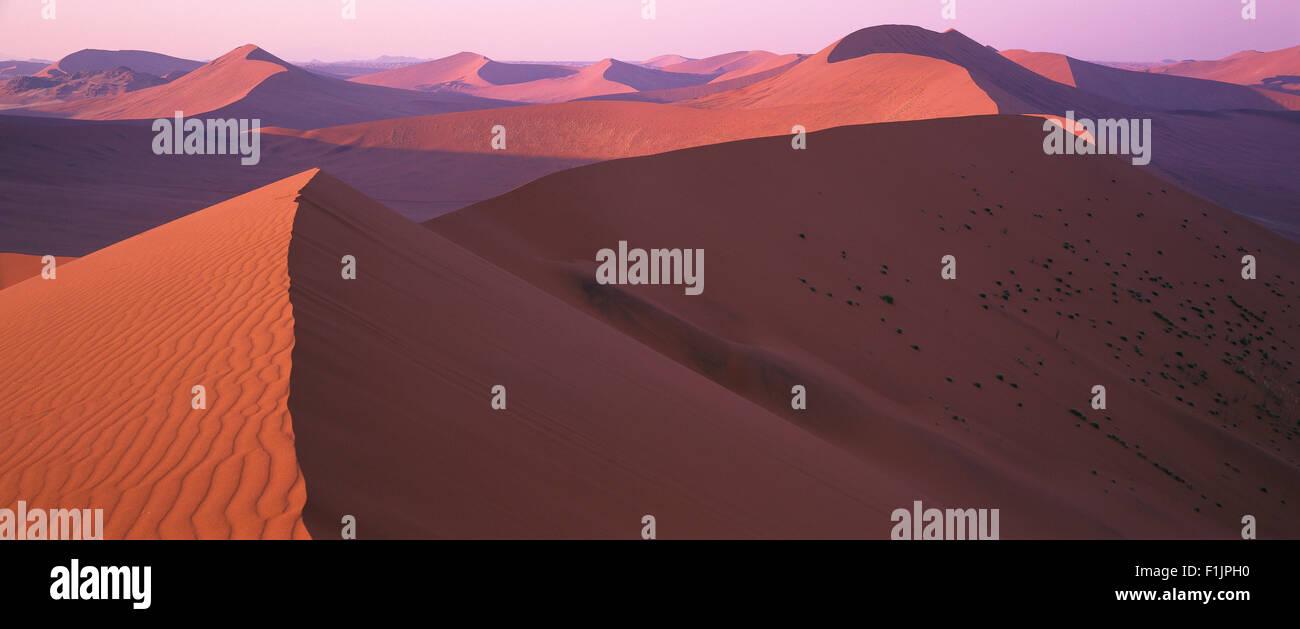 Sommaire des dunes du désert du Namib Naukluft Park, Sossusvlei, Namibie, Afrique Photo Stock