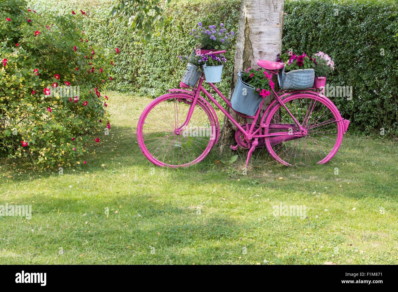 Un vélo rose avec des fleurs est comme décoration dans le ...