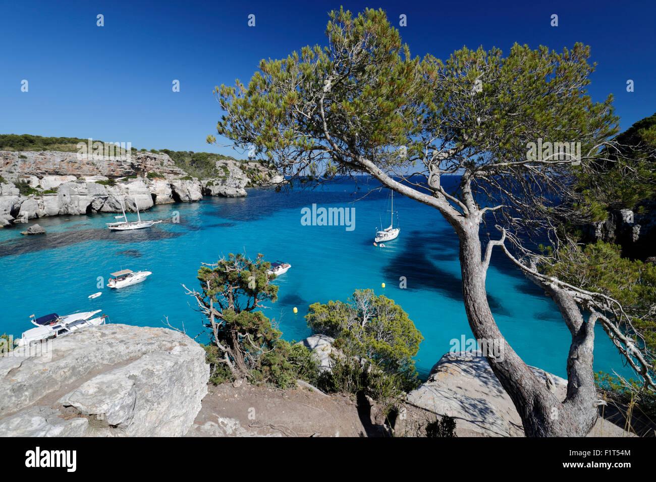 Yachts ancrés dans la crique, Cala Macarella, près de Cala Galdana, côte sud-ouest, Minorque, Iles Photo Stock