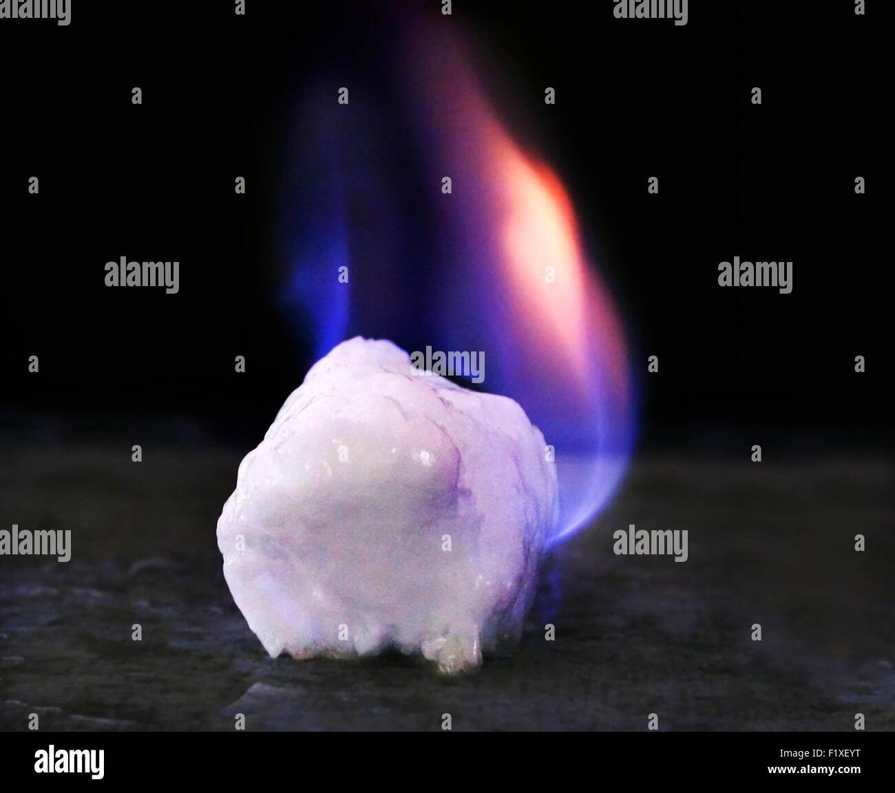Brûler un morceau d'hydrate de méthane que l'on croit être l'avenir de l'énergie. De l'hydrate de méthane se trouve en grandes quantités sous le pergélisol et les océans du monde entier. Banque D'Images