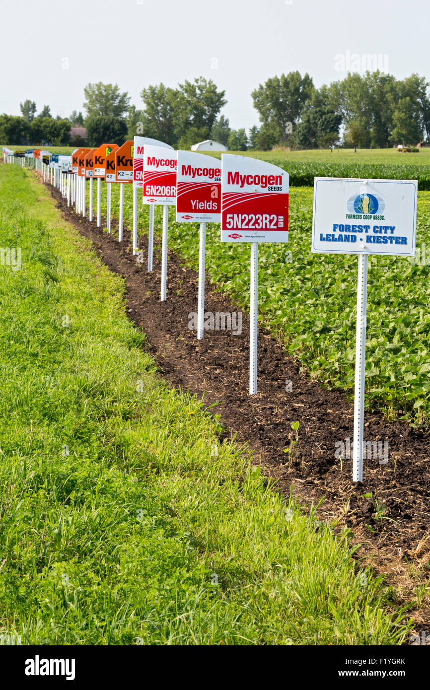 Forest City, Iowa - Signes marquer différentes variétés de cultures dans un champ de soja, y compris Photo Stock