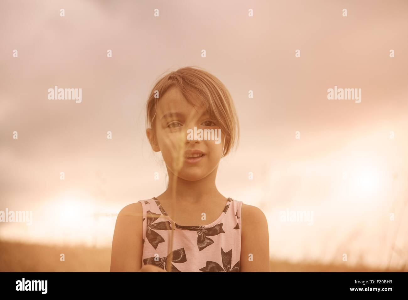 Portrait de fille avec épi de blé devant son visage en champ de blé Photo Stock