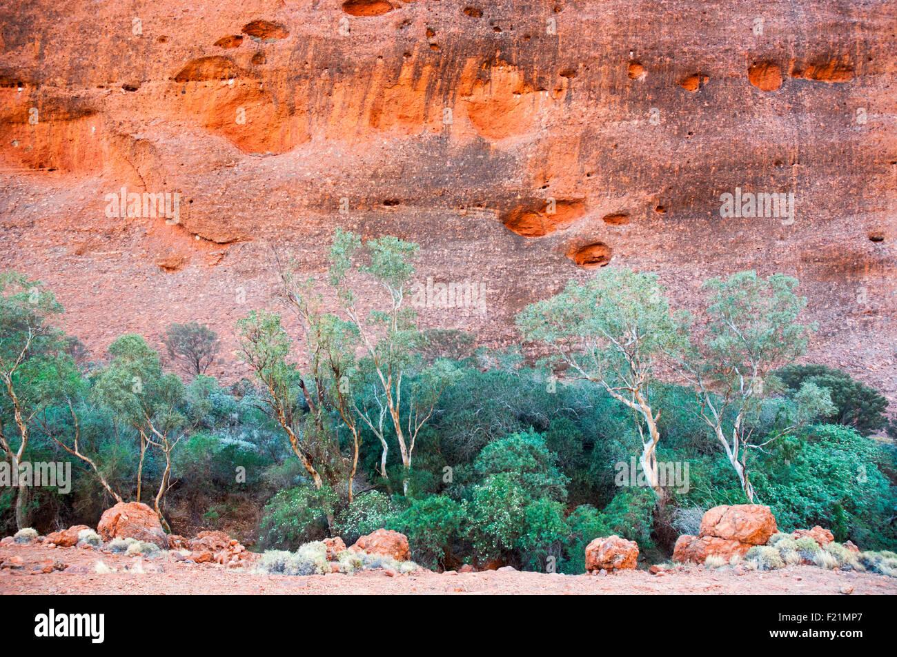 Tôt le matin à Walpa Gorge, Kata Tjuta (les Olgas), Centre de l'Australie Photo Stock