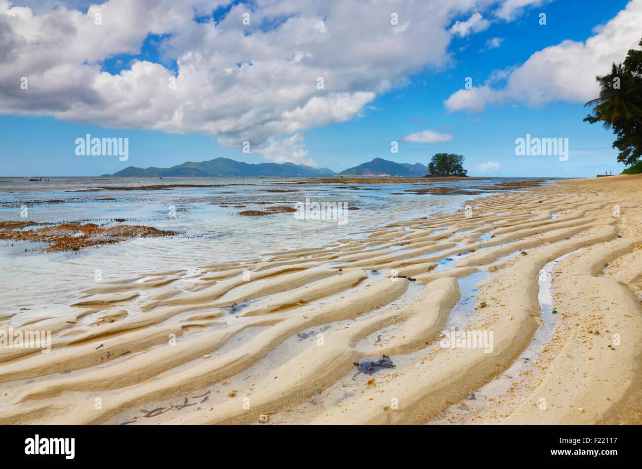 Dune de sable sur la plage, île de La Digue, aux Seychelles. Photo Stock
