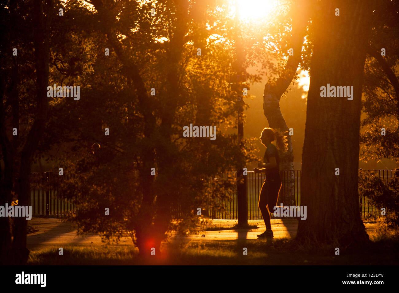 Tôt le matin dans un parc de Londres Photo Stock