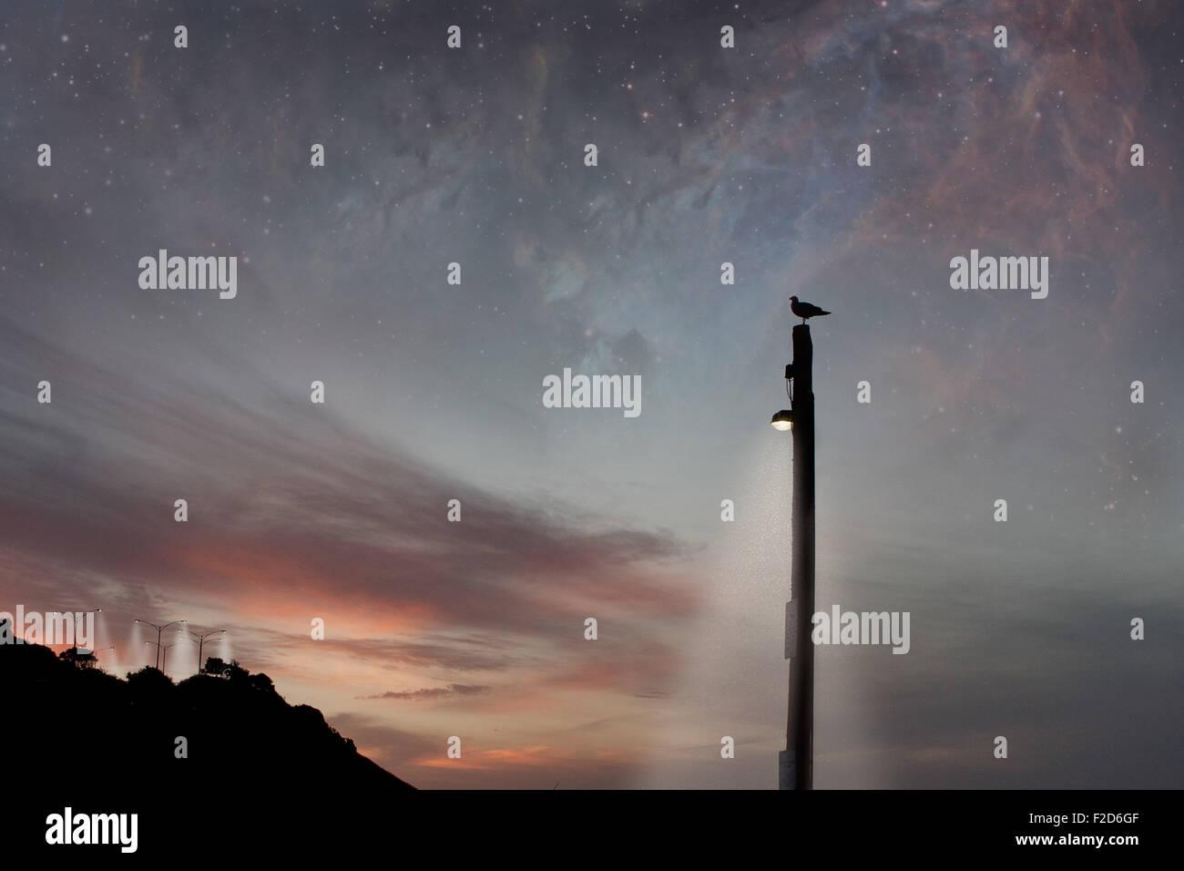 Scène de fantaisie et d'oiseau debout sur un poteau d'éclairage. Photo Stock