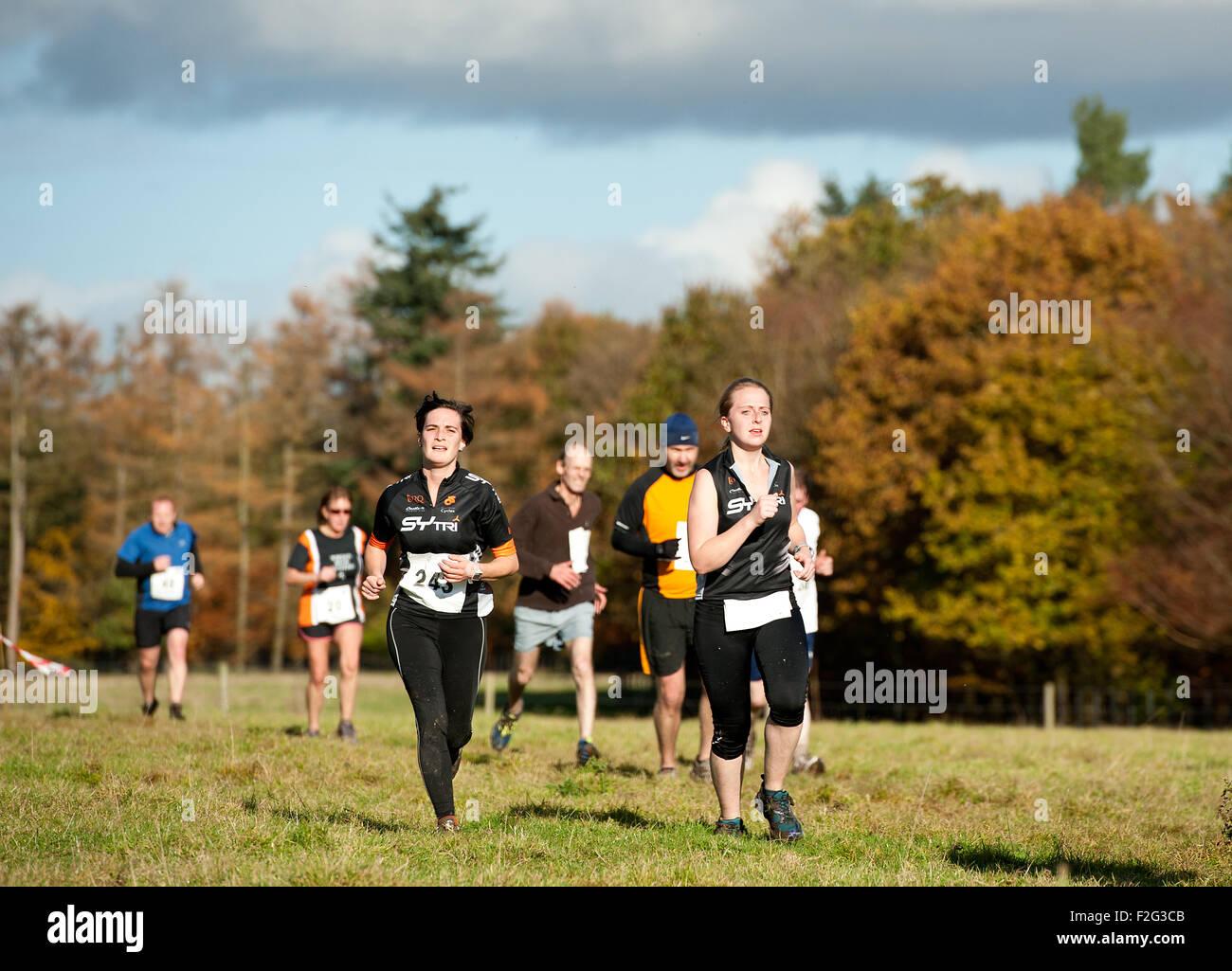 Les coureurs de cross-country pour traverser un champ dans le soleil d'automne Photo Stock