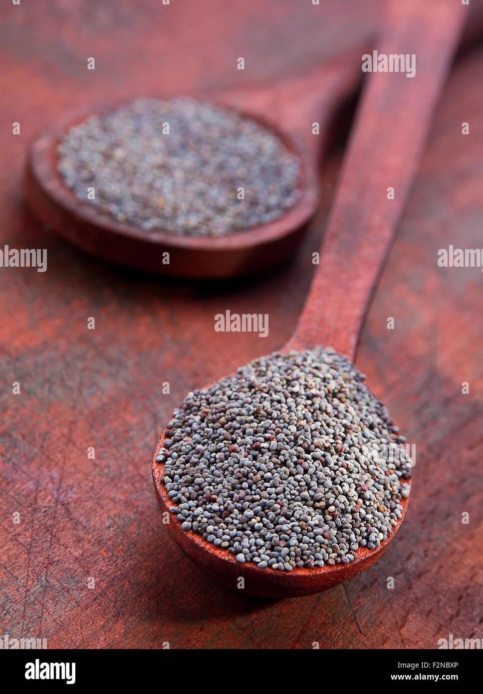 Sécher les graines de pavot libre en cuillère en bois Photo Stock