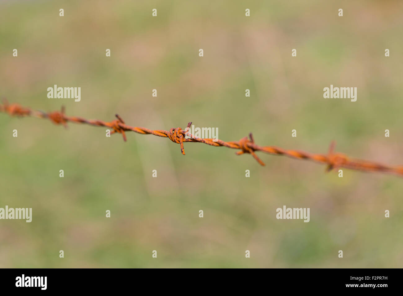 Gros plan sur une clôture en fil barbelé rouillé, Royaume-Uni Banque D'Images