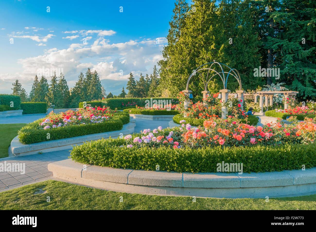 Le jardin de roses, UBC, Vancouver, Colombie-Britannique, Canada Photo Stock