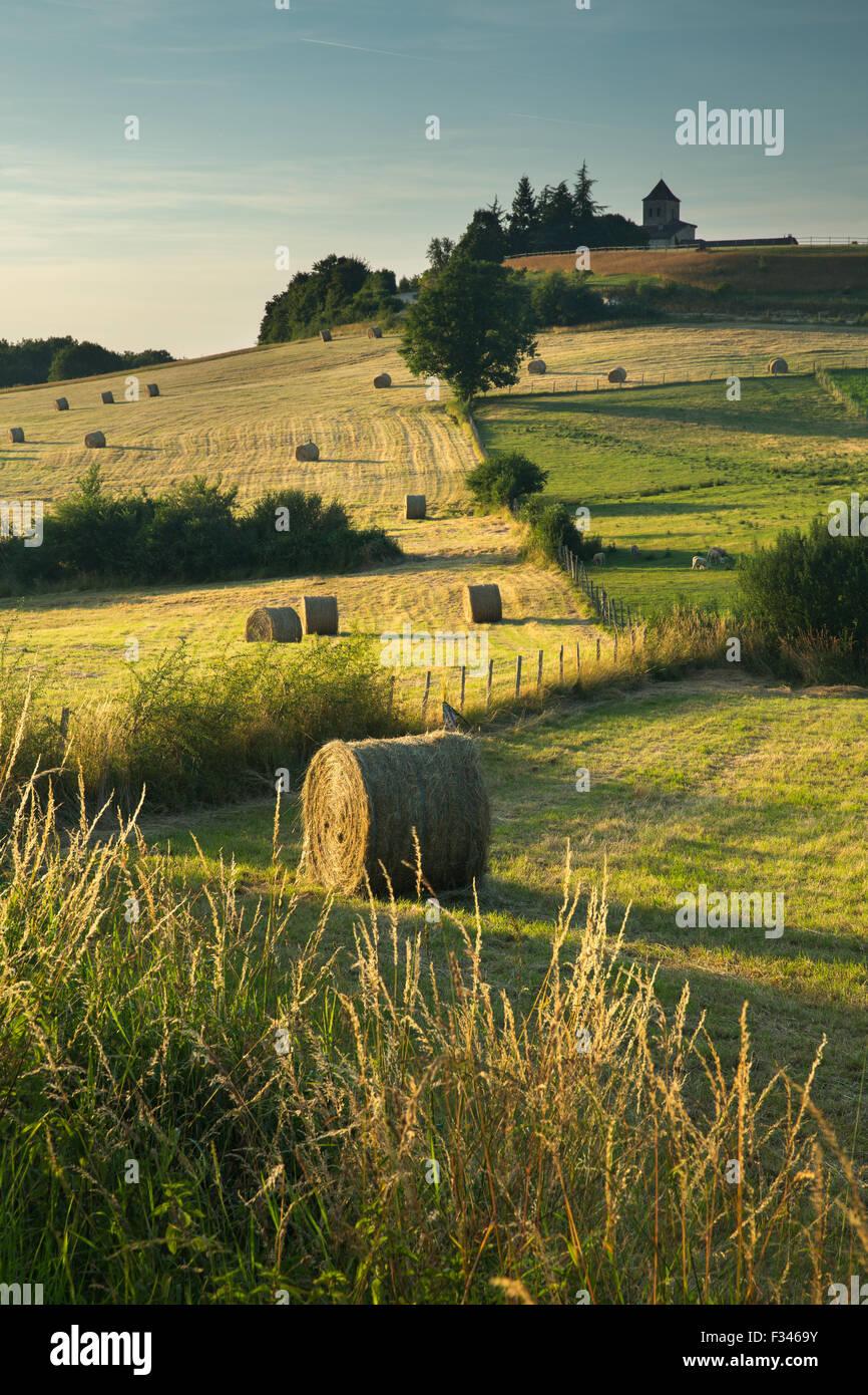 Bottes de foin dans les champs près de Beaumont du Périgord, Pays de Bergerac, Dordogne, Aquitaine, France Photo Stock