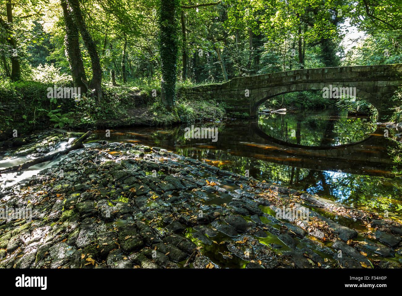 Pont sur la rivière près de Sheffield Rivelin. Banque D'Images