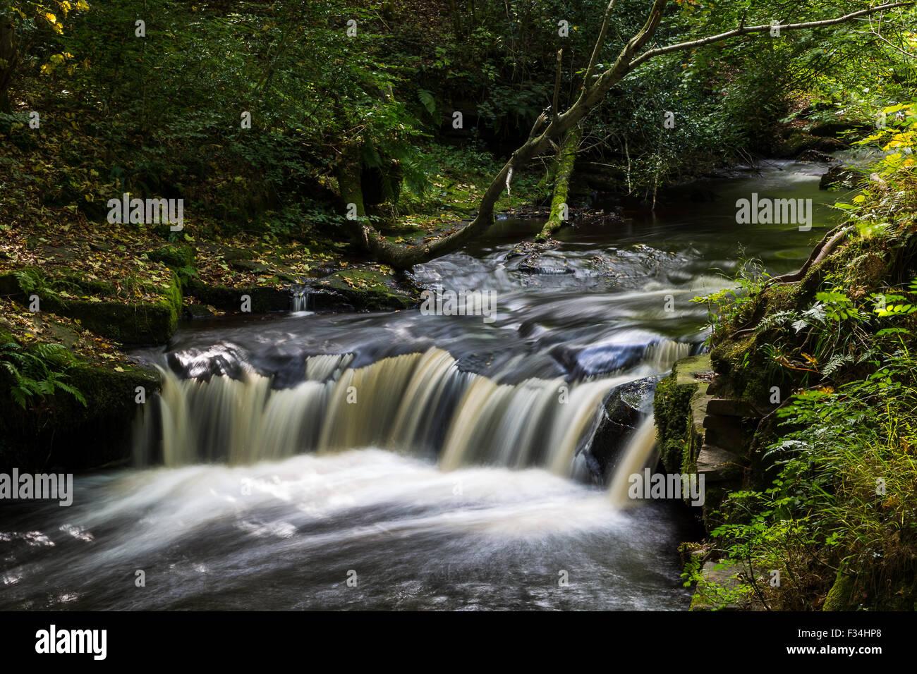 Cascades d'eau vu le long de la vallée de Rivelin Sentier nature près de Sheffield. Banque D'Images