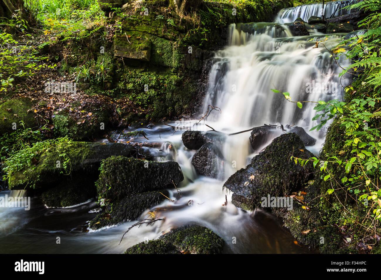 Vu la cascade le long de la vallée de Rivelin Sentier nature près de Sheffield. Banque D'Images