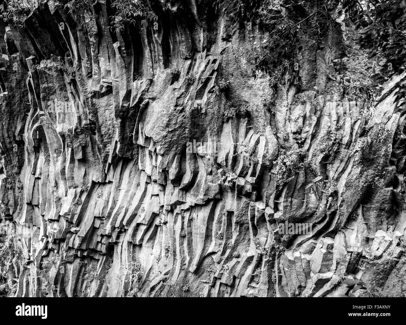 Gorges de l'Alcantara valley. Gole dell'Alcantara. L'Etna, en Sicile. Banque D'Images