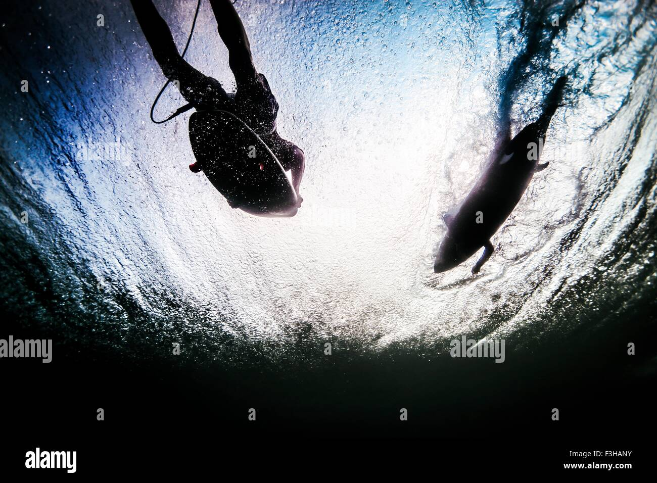 Low angle sous-vue de deux surfers silhouetted pagayer à travers les vagues de l'océan à Bali, Photo Stock