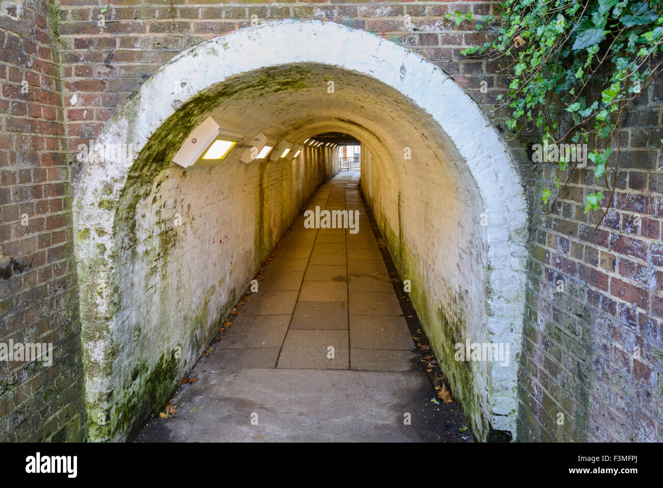 Ivy Arch tunnel piéton sous un chemin de fer à Worthing, West Sussex, Angleterre, Royaume-Uni. Banque D'Images